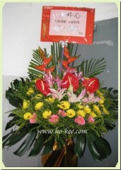 H202-紅掌系列(蟹鉗,火百合,太陽花)