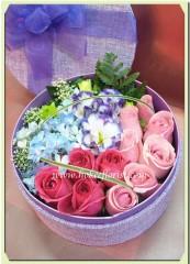 BF001-雙色玫瑰鮮花禮盒