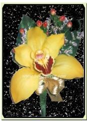 R012-鮮黃蕙蘭襟花